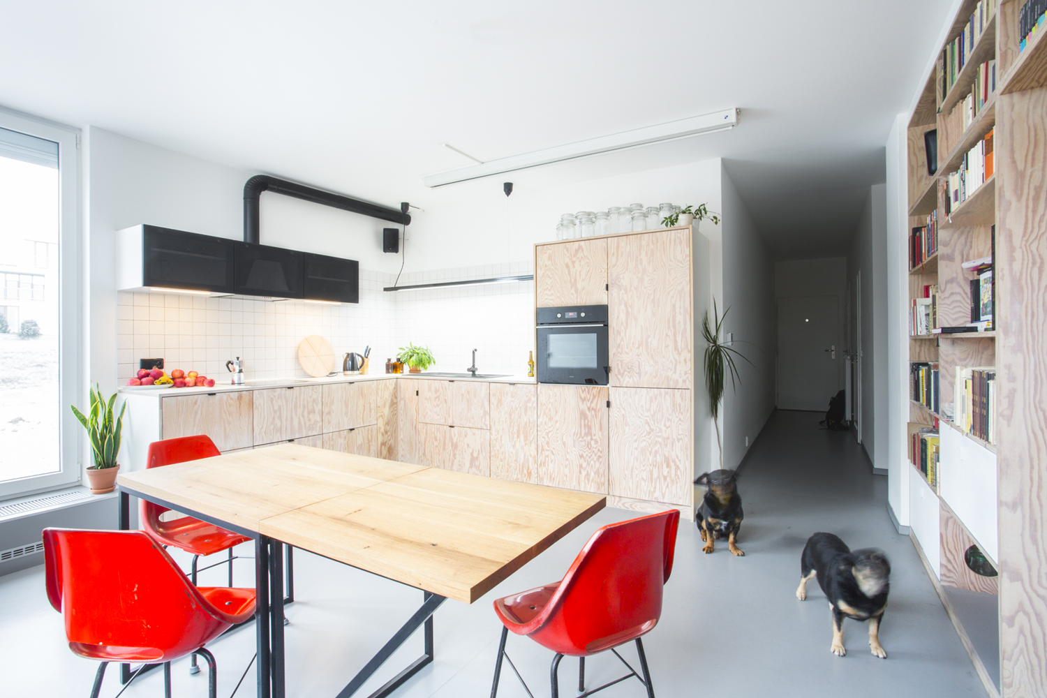 Studio Muck Flat for two and pets